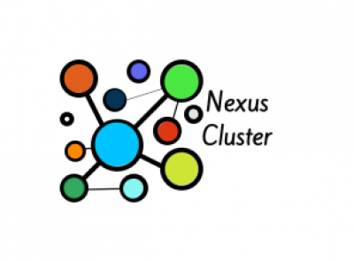 News- bulletin of the Nexus Project Cluster – Issue 2 (March 2021)